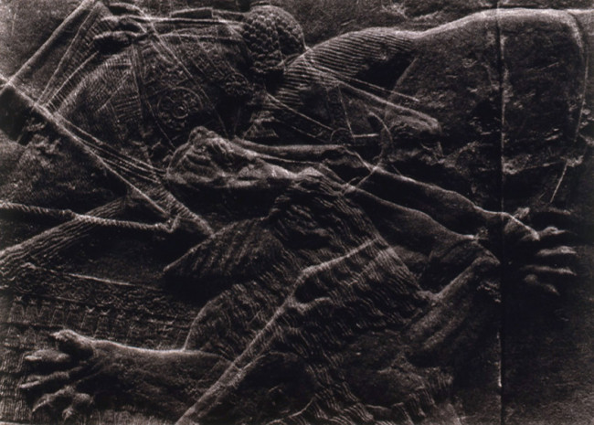 La cacera assíria # 11